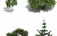 مجموعه ی درخت برای تری دی مکس